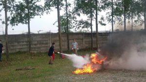 fire-D inhouse